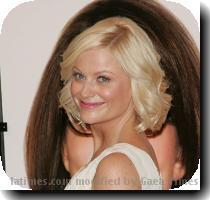 Amy Poehler's gonna be a