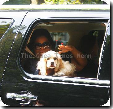 **Exclusive** Oprah Winfrey waves to a photographer while passing through Fifth Avenue in her car with her cocker spaniel Sadie - she is in the Big Apple to tape her show live from Central Park's SummerStage. New York City, USA - 18.09.09 Mandatory/IANS-WENN