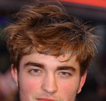 Robert Pattinsons Elephant incident
