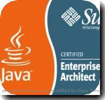 How To Prepare for Sun Certified Enterprise Architect (SCEA) Examination In the best way