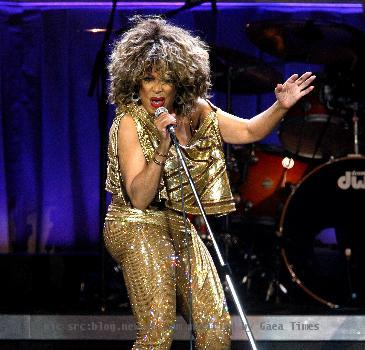 Tina turner gold dress