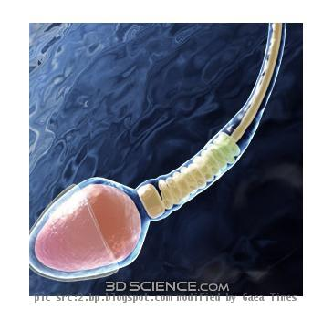 Is sperm affected by diabetes