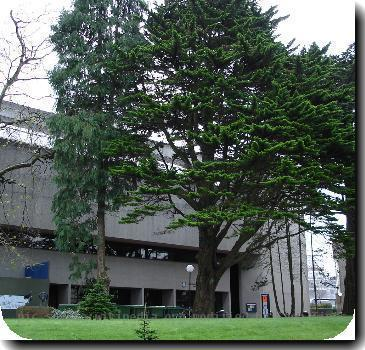 The Boole Libary at UCC taken from near the East Wing of the Quad