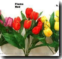 Tulip Bush x9 w 9 Flowers   Leaves Order